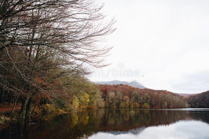 Sjö och lock i Autumn Forest arkivfoto