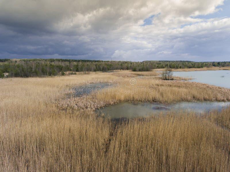 Sjö och skog under vårtid ovanför sikt Dabrowa Gorn royaltyfria foton