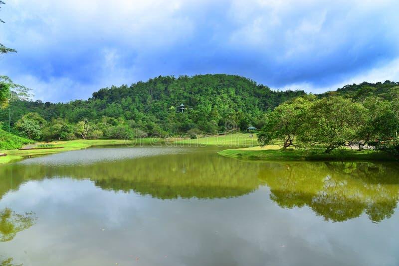 Sjö och trädgård med blå himmel royaltyfria bilder