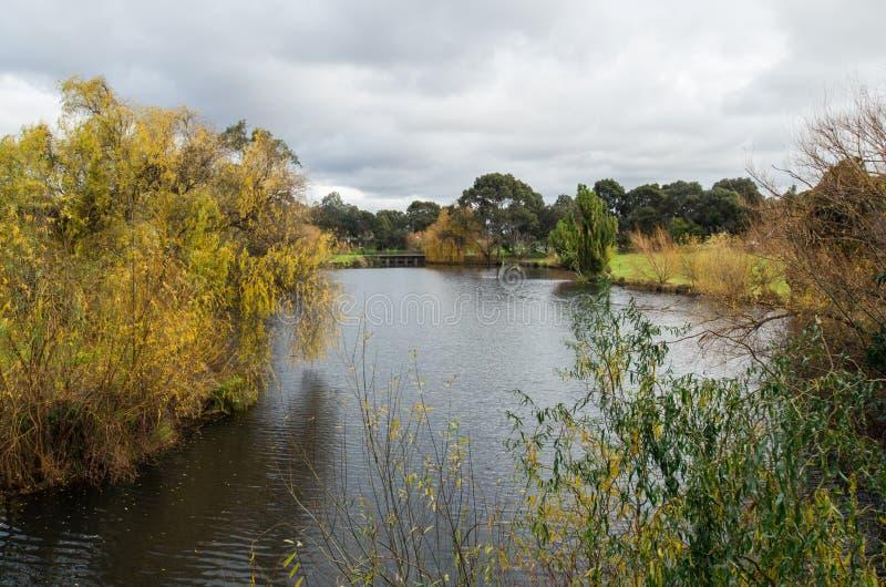 Sjö på det LaTrobe universitetet i Bundoora royaltyfria bilder