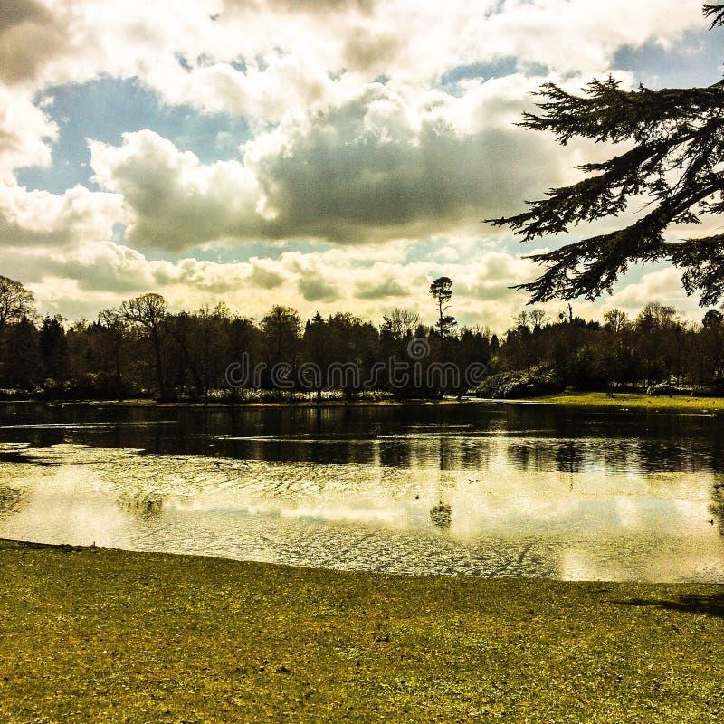 Sjö på en molnig vårmorgon royaltyfri fotografi