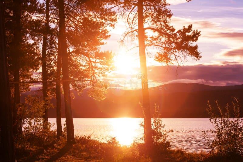 Sjö på soluppgång royaltyfri bild