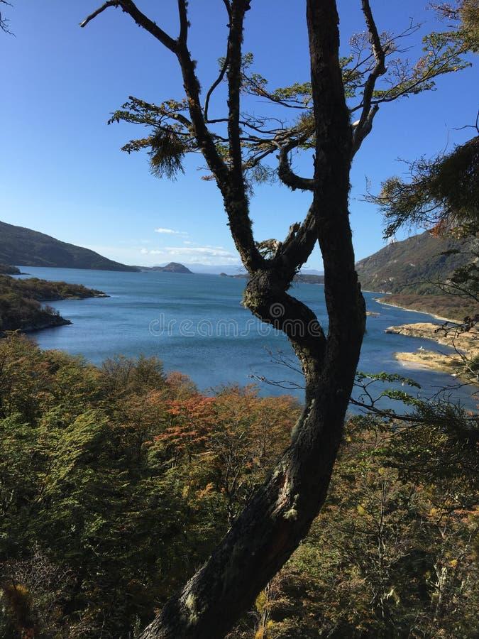 Sjö Tierra del Fuego National Park Ushuaia Argentina royaltyfria bilder