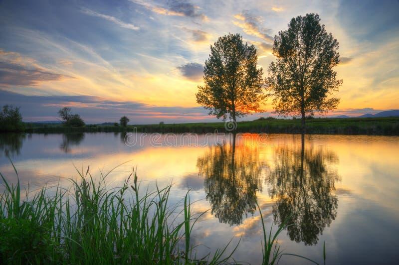 Sjö under våren - solnedgång royaltyfria bilder