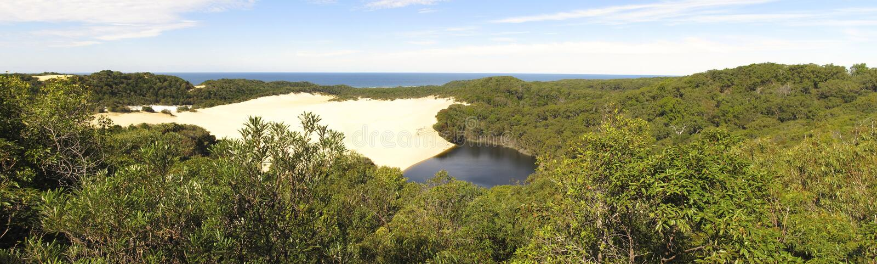 Sjö Wabby, Fraser Island, Queensland, Australien arkivbilder
