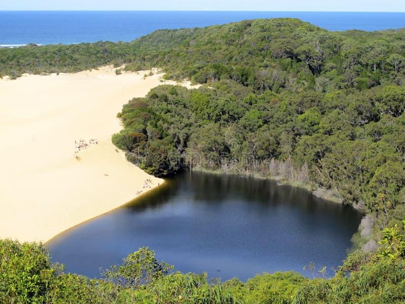 Sjö Wabby, Fraser Island, Queensland, Australien arkivfoton