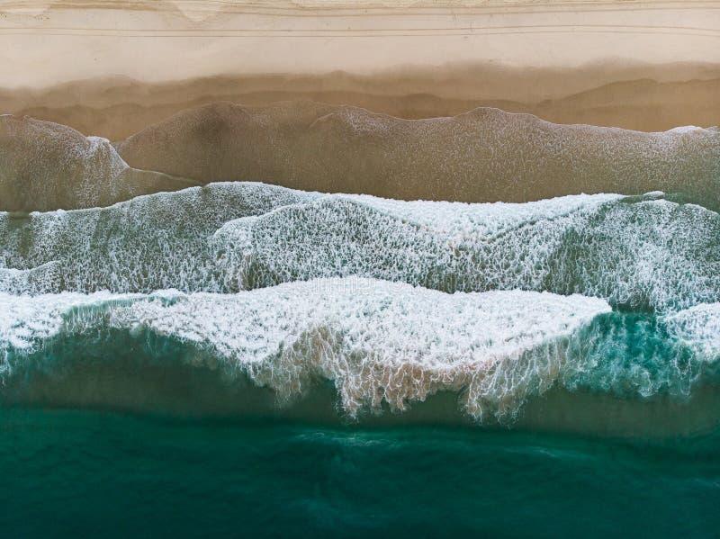 Sjöjungfrustrand i Queensland royaltyfri fotografi