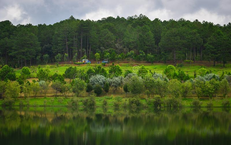 Sjölandskap i Dalat, Vietnam royaltyfri bild