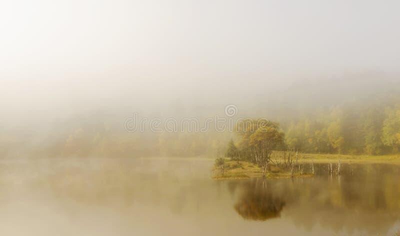 Sjölandskap i dimma royaltyfri fotografi