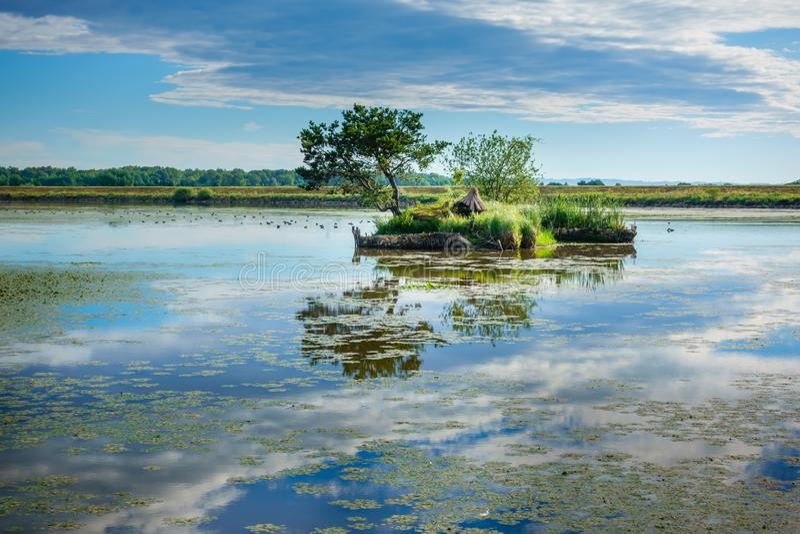 Sjölandskap tidigt på morgonen med moln och ön med trädet i sjön arkivfoton