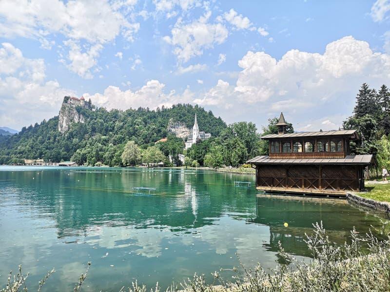 Sjön Bled, lugn i Slovenien royaltyfri foto