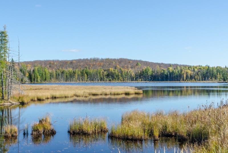 Sjön i Algonquin parkerar royaltyfria foton