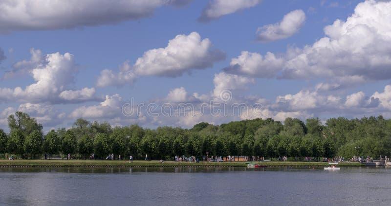 Sjön i parkerar på den soliga sommardagen natur s?songer royaltyfri fotografi