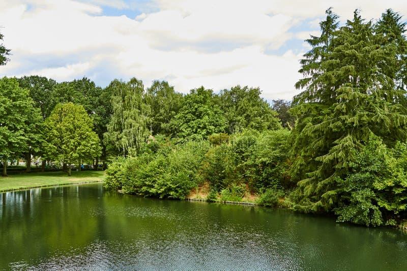 sjön i sommar parkerar H?rlig sommarpark Nederländerna Juli royaltyfria bilder