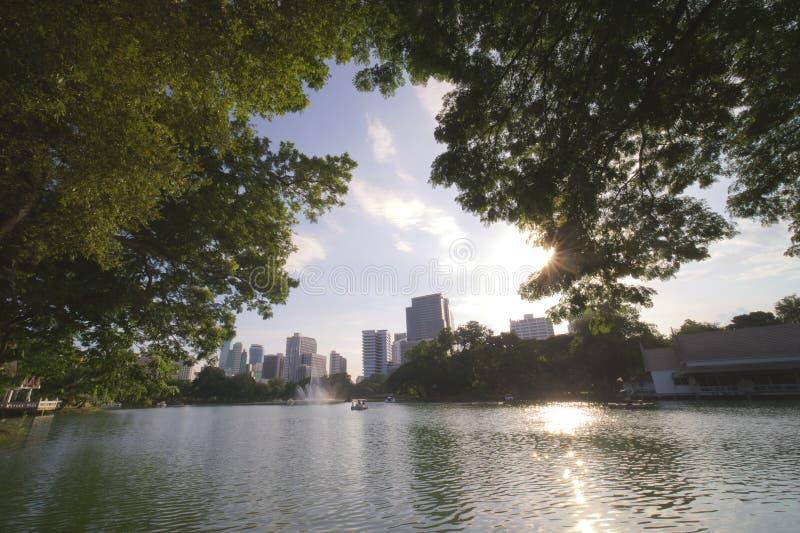 Sjön i staden royaltyfri fotografi