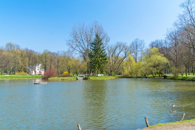 Sjön med ön i brunnsort parkerar i Naleczow, Polen royaltyfri foto