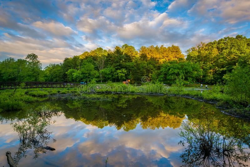 Sjön Needwood på solnedgången, på övreRock Creek parkerar i Derwood, Maryland fotografering för bildbyråer