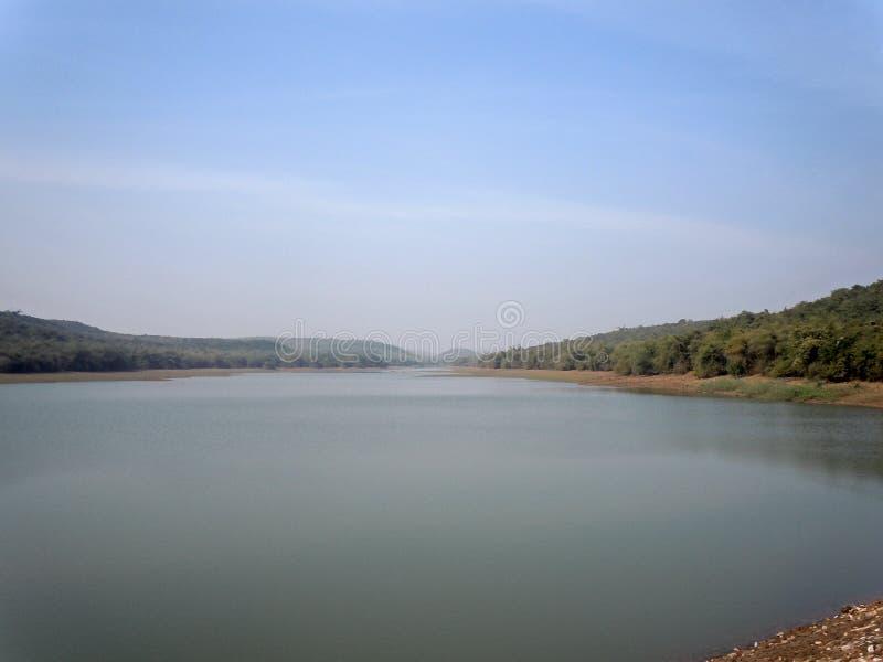 Sjön och den omgeende gröna skogen arkivbild