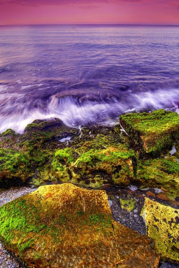 sjösidasolnedgång royaltyfri bild
