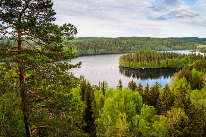 Sjösikt i Finland arkivfoton