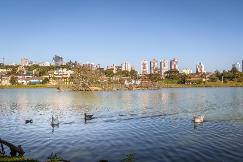 Sjösikten av Barigui parkerar med gäss och stadshorisont - Curitiba, Parana, Brasilien royaltyfria foton