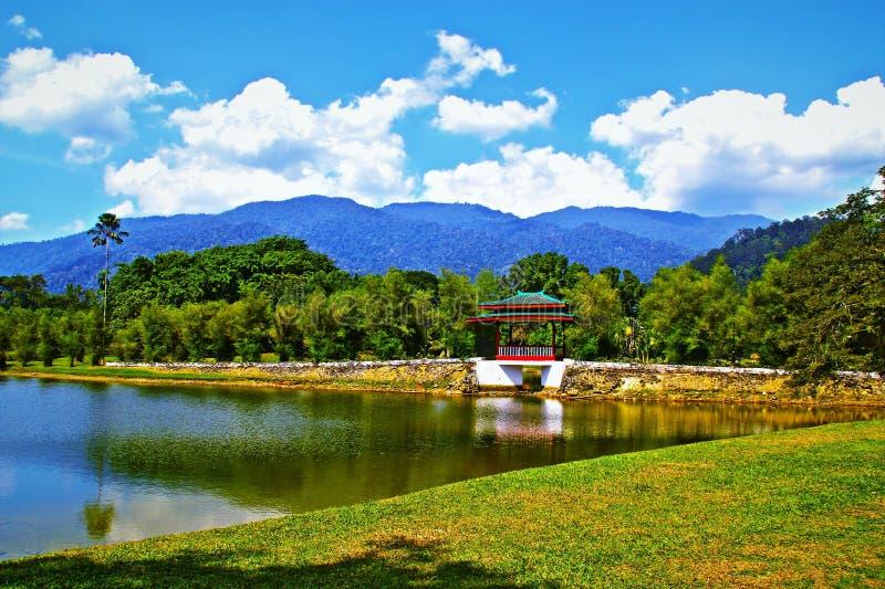 Sjösiktsträdgård Taiping Malaysia arkivbild