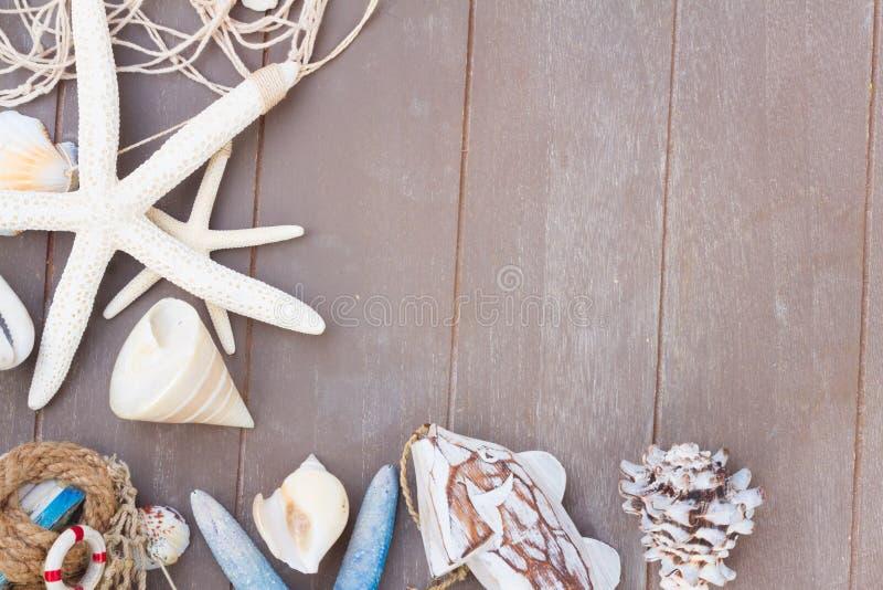 Sjöstjärna- och havsskal på träbräde arkivbild