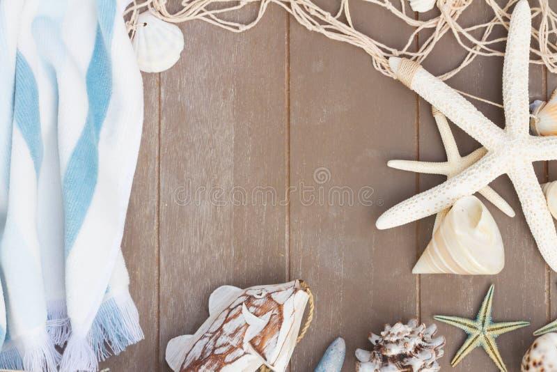Sjöstjärna- och havsskal på träbräde royaltyfria bilder