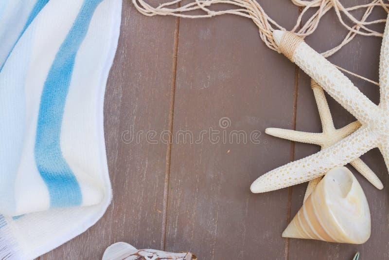 Sjöstjärna- och havsskal på träbräde royaltyfria foton