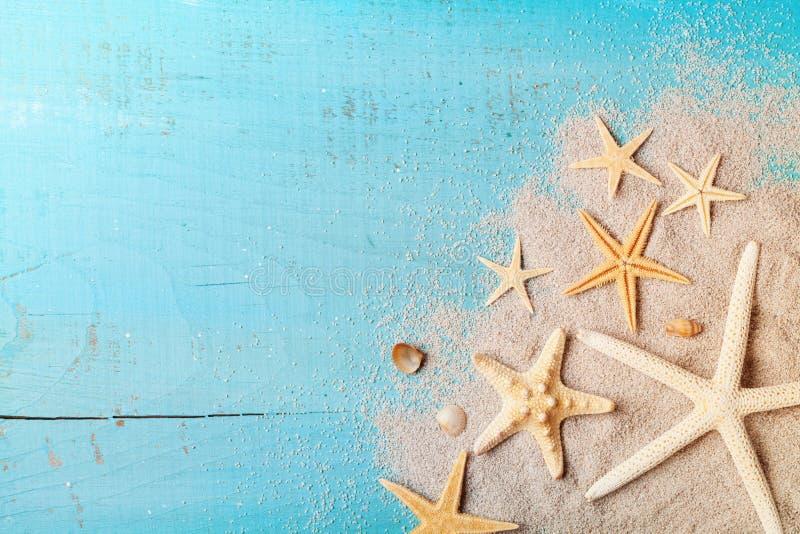 Sjöstjärna och snäckskal på sand för sommarferier och loppbakgrund royaltyfri bild