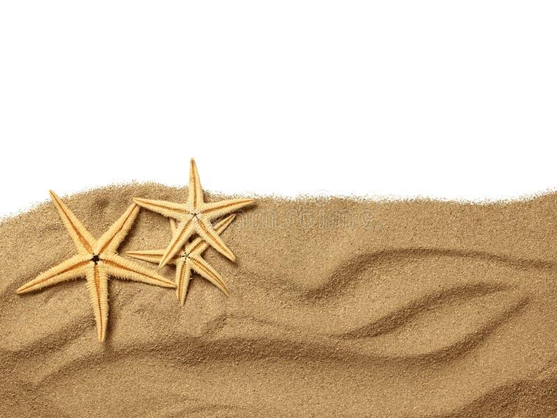 Sjöstjärna på strandsanden arkivfoton