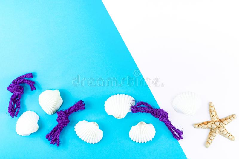 Sjöstjärna, snäckskal och havsrep på blå bakgrund Tropiskt begrepp f?r sommarsemester ovanf?r sikt Lekmanna- l?genhet royaltyfria bilder