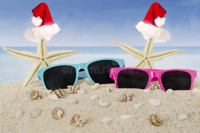 Sjöstjärna två med solglasögon på den vita stranden royaltyfri fotografi