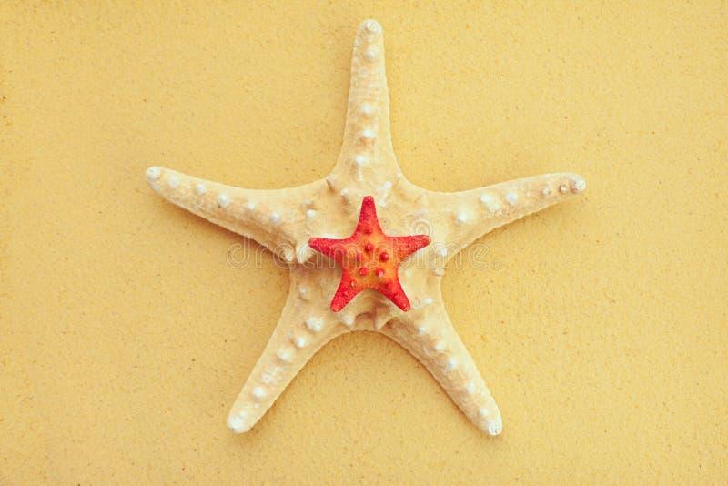 Sjöstjärna två på sand royaltyfria foton