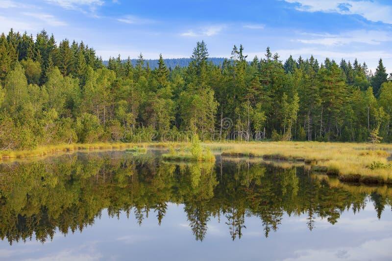 Sj? f?r j?kel` s i nationalparken Sumava, Tjeckien royaltyfri fotografi