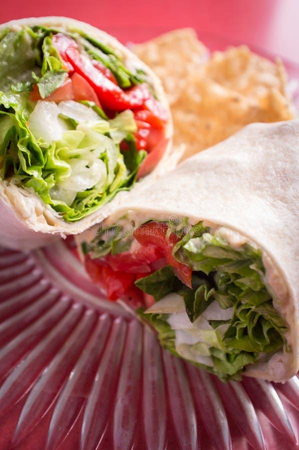 Sjal för VeggieHummus smörgås royaltyfri fotografi