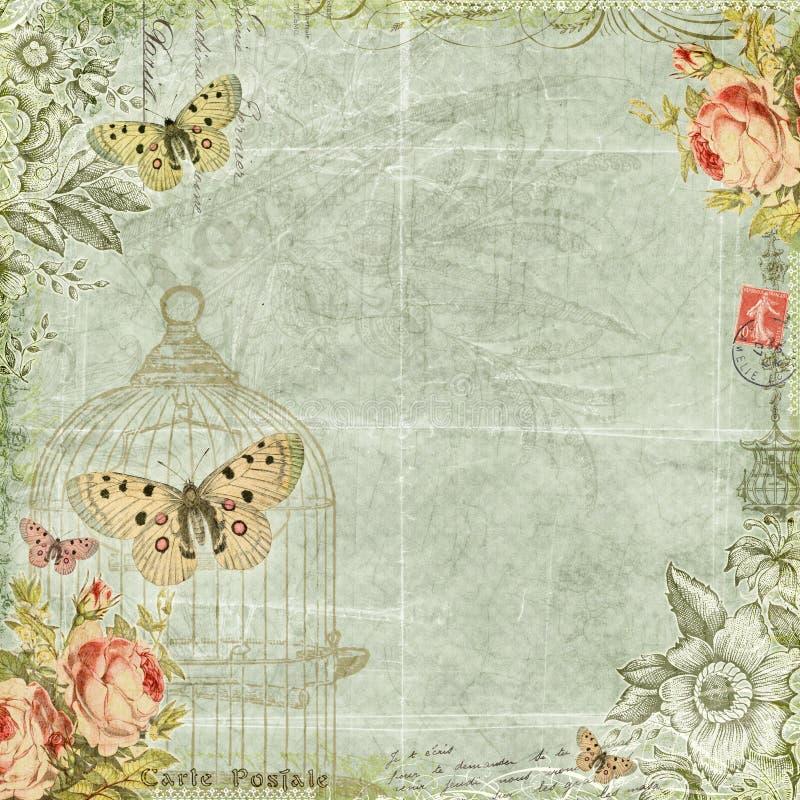 Sjaskig chic blom- fjärilsrambakgrund