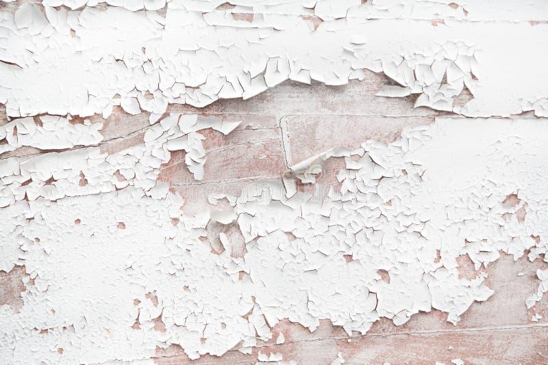 Sjaskig chic stil- eller tappningbakgrund av vitt trä royaltyfri foto