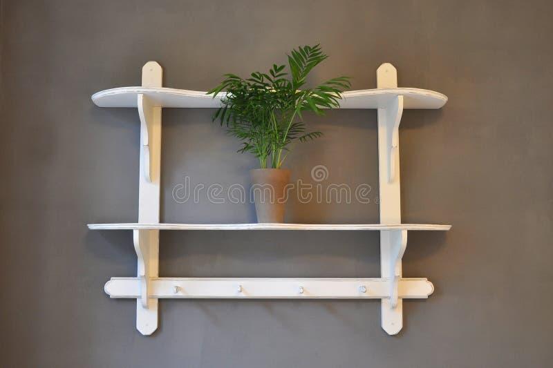 Sjofele kuikenplank stock afbeelding
