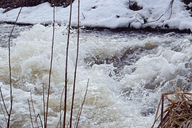 Sjuda flodflöde av vitt vatten och torrt gräs på kusten arkivfoton