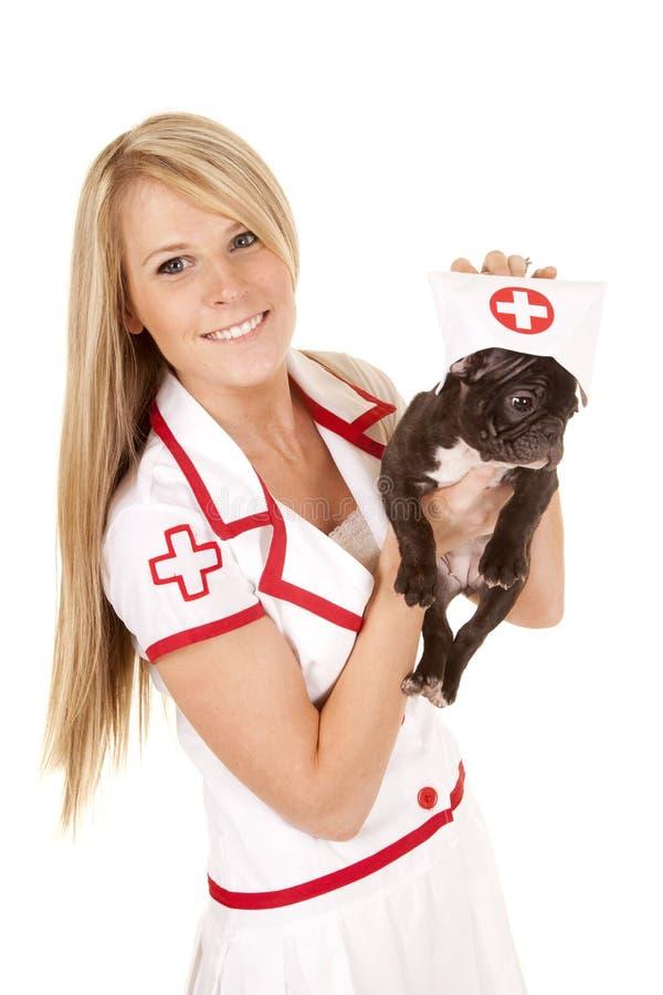 Sjuksköterska med den lilla hundhållen med hatten royaltyfria bilder