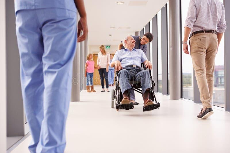 Sjuksköterska Pushing Senior Patient i rullstol längs korridoren royaltyfri bild