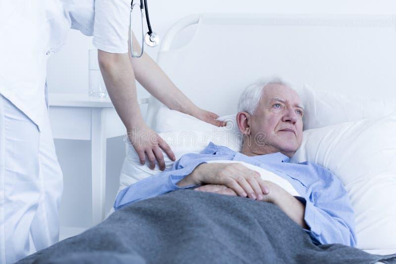 Sjuksköterska som fluffar kudden av patienten royaltyfria bilder