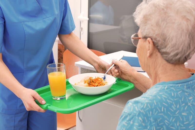Sjuksköterska som ger mat till den höga kvinnan i sjukhussal arkivfoto