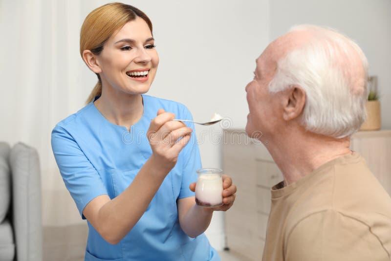 Sjuksköterska som matar den äldre mannen med yoghurt Hjälpa högt folk royaltyfria foton