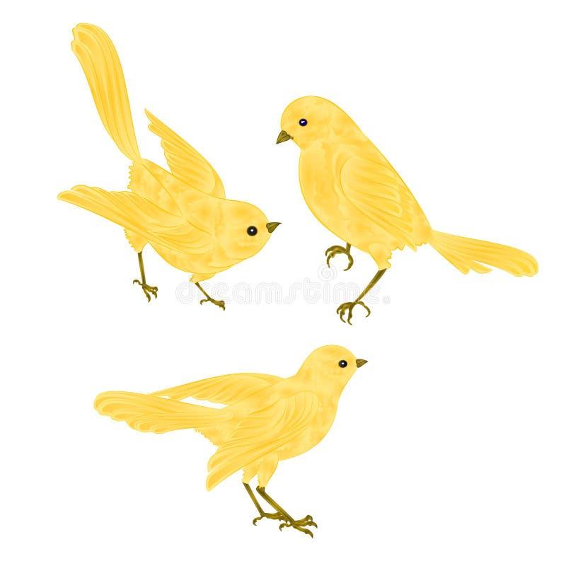 Sjungande guld- fåglar vektor för kanariefågeltappninguppsättning två stock illustrationer
