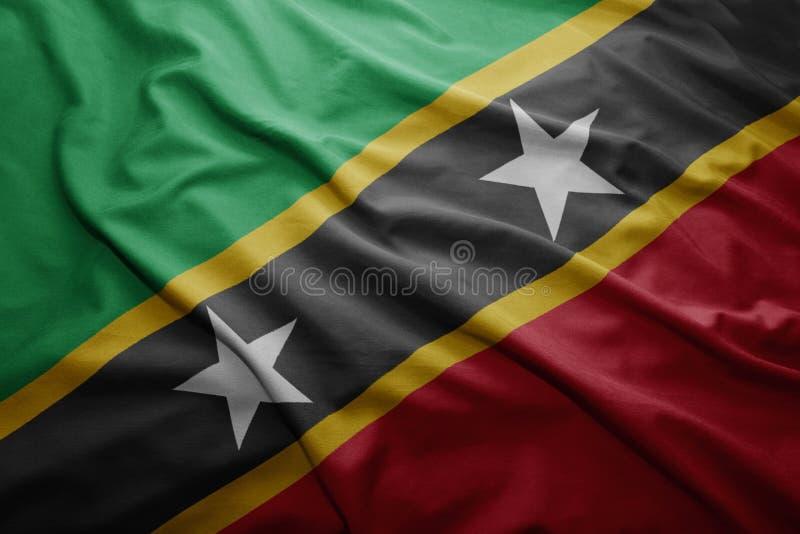 Sjunka av Sanktt Kitts och Nevis royaltyfri illustrationer