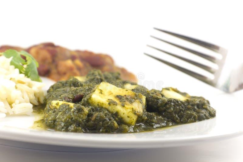 Sjunkande Paneer - autentisk indisk mat arkivfoto