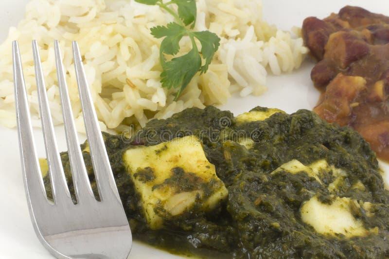 Sjunkande Paneer - autentisk indisk mat royaltyfria bilder