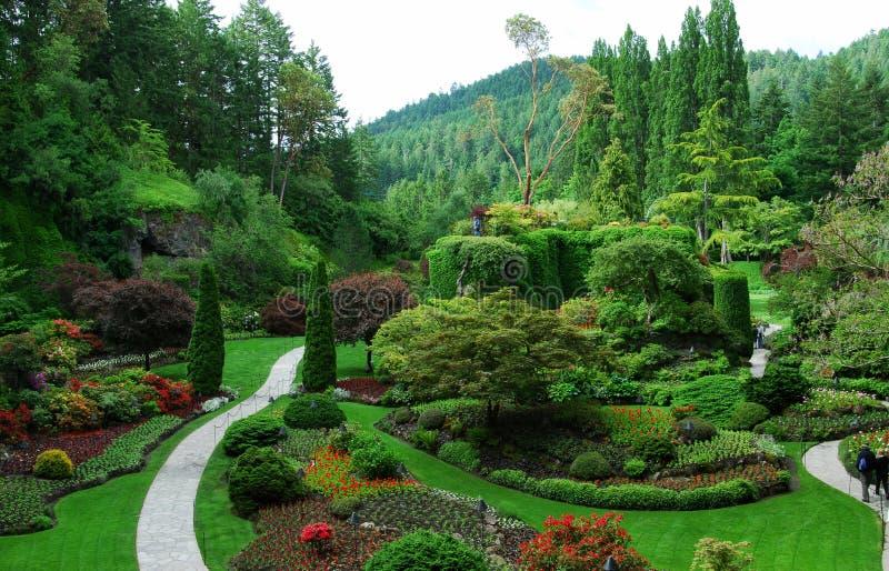 sjunkna trädgårds- trädgårdar för butchart royaltyfria bilder